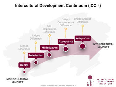 IDI Continuum: Denial, Polarization, Minimization, Acceptance, Adaptation